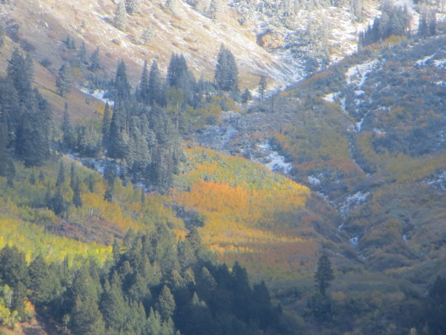 Santaquin Peak, Late Fall